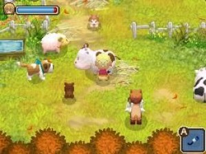 Harvest Moon: Twin Villages